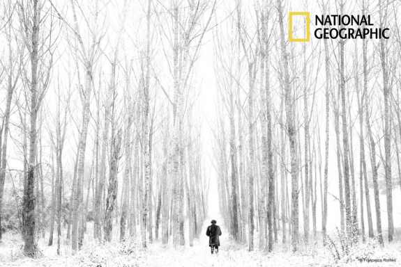 F. Romeo vince il National Geographic Italy 2013